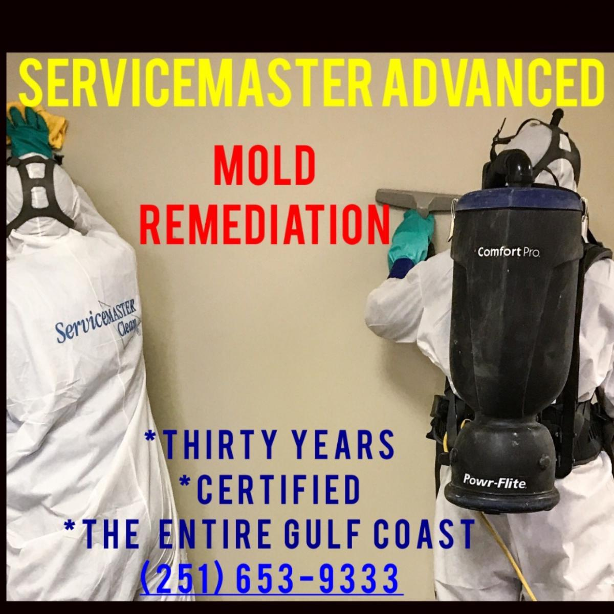 Mold Testing & Remediation, Lowest Cost - Mobile & Baldwin Counties